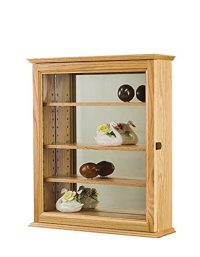 Amazon.com: Display Case