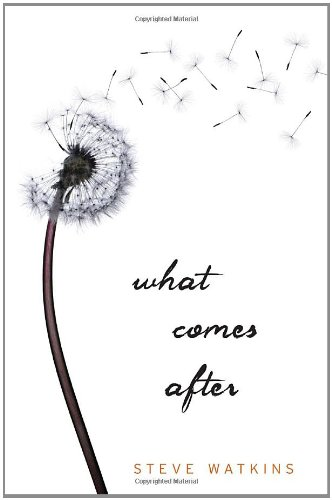 A Good Addiction: Book Review: What Comes After by Steve