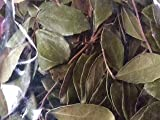 Herbs: Wintergreen ~ Dried Leaf ~ Mostly Whole ~ 1 Ounce Ravenz Roost Herbs with Special Info on Label