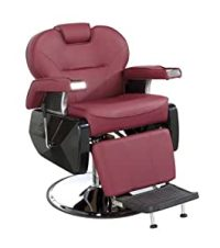 Amazon.com : All Purpose Hydraulic Recline Barber Chair ...