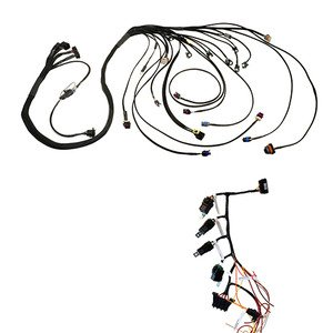 Amazon.com: CBM Motorsports 2.4 Ecotec Engine Wiring
