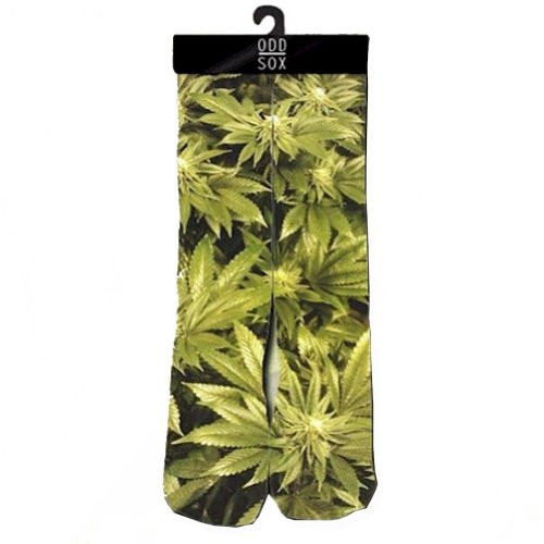Odd Sox Trees Socks
