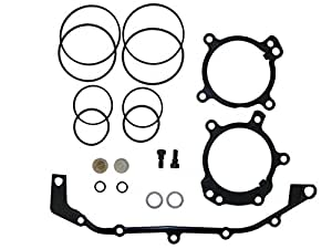 Amazon.com: BMW DUAL VANOS O-Ring Seal Repair Kit E36 E39