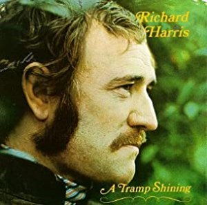 "Cover of ""Tramp Shining"""