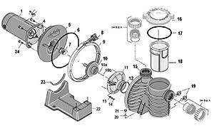 Amazon.com : Sta-Rite Max-E-Pro Series Pump Replacement