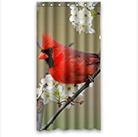 Amazon.com: classic red Cardinal bird design,funny birds ...