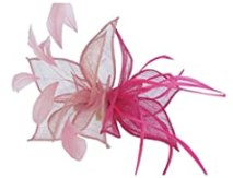 Eden Hats 2015 New Sinamay Hai Clip Fascinators Fashion Headwear (pink+rose)