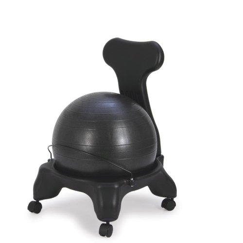 Exercise Ball Office Chair  fel7com