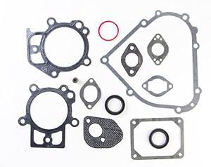 Amazon.com: Briggs & Stratton 695438 Engine Gasket Set