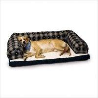 Beasley The Dog | Lifestyle Arts