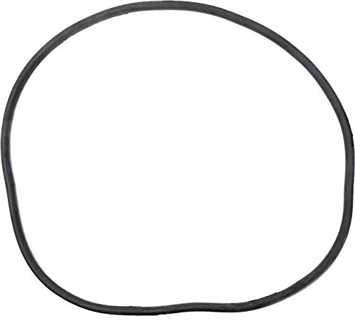 Pentair 27001-0061S Body O-Ring for Tank Replacement for