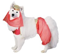 chanchnimawun - cheap large dog costumes
