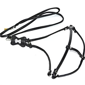 Amazon.com : Kane and Couture 42nd Street Harness for Pets