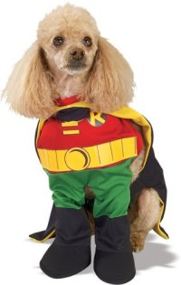 Rubie's Costume Co Robin Pet Cost.(Xs Only) Costume ...