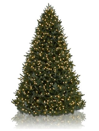 12 BH Fraser Fir Artificial Christmas Tree LED Lights