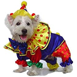"Shiny Clown Dog Costume Size: 4 - (12.5"" L)"