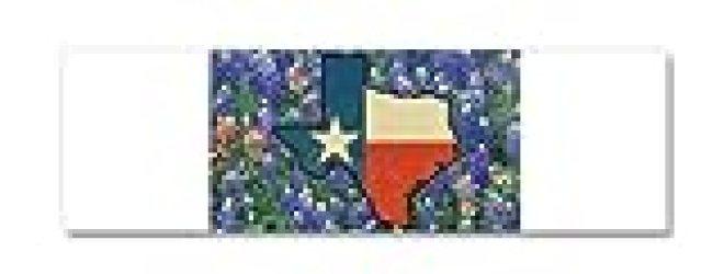 21 x 7 Wall Vinyl Sticker Texas Flag Bluebonnets