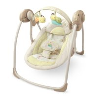Learn More About Bright Starts InGenuity Portable Swing ...