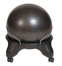 Amazon.com: Health Mark BT20000 Swiss Ball Chair: Sports ...