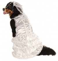Doggie Winter Wedding Dress Up Clothes | WebNuggetz.com