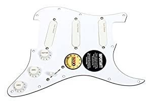 Amazon.com: Fender Stratocaster Strat Clapton Lace Sensor