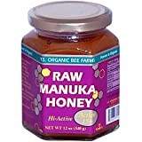 Raw Manuka Honey YS Eco Bee Farms 12 oz Paste