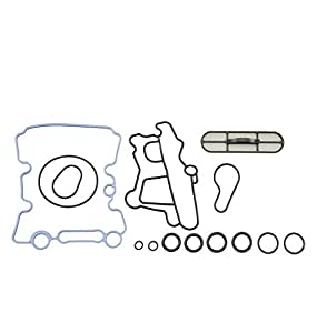 Amazon.com: Engine Oil Cooler Gasket Kit for Ford