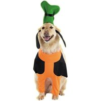 Disney Pet Costumes Exclusively at PetSmart - Review and ...