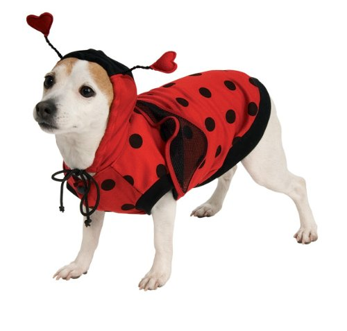 Lady Bug Pet Costume, Small