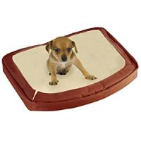 Amazon.com : Bergan The Dog's Bed, Terracotta, Small : Pet ...