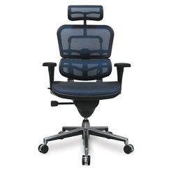 Office Chairs For People With Bad Backs Grey Rocking Chair What Are The Best Back Pain 2017 Ergohuman