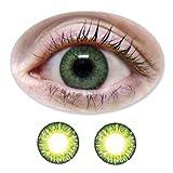Farbige Kontaktlinsen 3-Monatslinsen Fun BIONORA Green /Grüne mit oder ohne Stärken