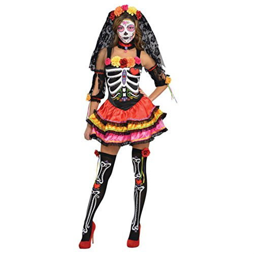 Womens Day Of The Dead Senorita Costume Size Large (10-12)