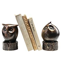 Anecdotal Aardvark Wide Eyed Owl Bookends