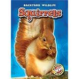 Backyard Wildlife: Squirrels