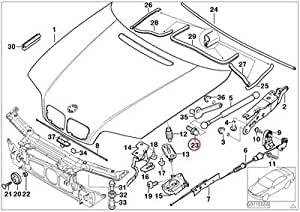 Amazon.com: BMW Genuine Body-Side Frame Engine Hood