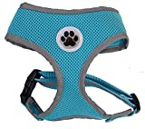 Small Turquoise Cute Reflective Mesh Dog Puppy Harness No Pull Pet Cat Harnesses,Small Size