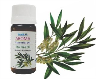 Buy Healthvit Aroma Tea Tree Essential Oil 30ml At Rs 249 Only @ Amazon