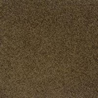 Milliken Legato Embrace 'Role Call' Carpet Tiles: Amazon ...