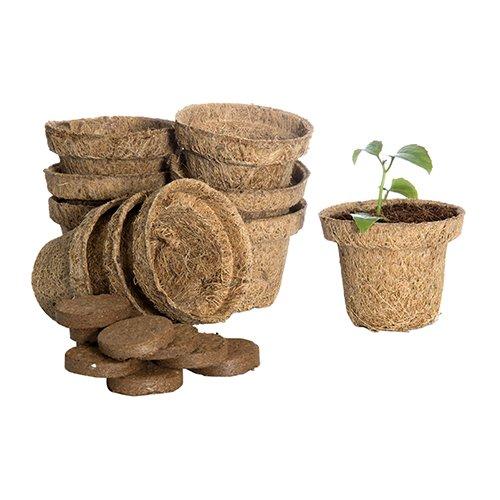 Ecofriendly Coir Pot
