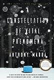 A Constellation of Vital Phenomena: A Novel