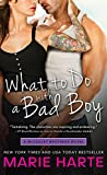 What to Do with a Bad Boy (The McCauley Brothers Book 4)