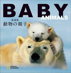 復刻版 動物の親子 (ナショナル・ジオグラフィック CUBE-BOOK)