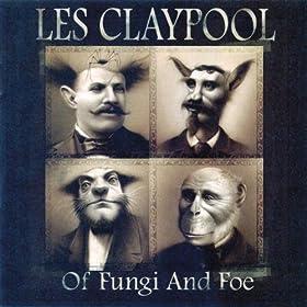 Of Fungi and Foe