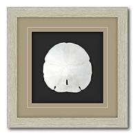 Amazon.com: Shadow Box Frame Double Matte Mounted Sand ...