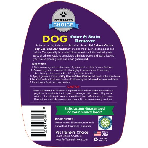 Dog Urine Carpet Stain Removal: Best Dog Urine Odor Remover