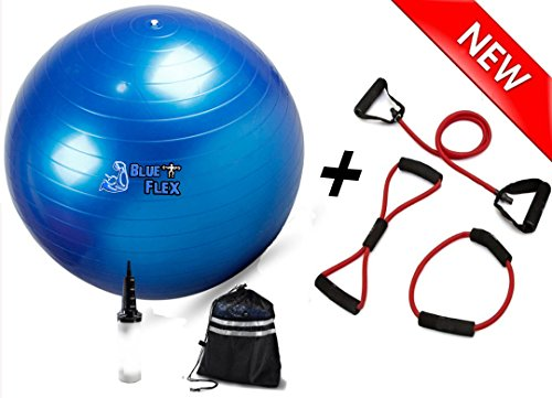 BLUE FLEX Exercise Ball and Resistance Bands Set