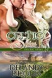 Celtic Skies, Book 3 in the Celtic Steel Series