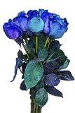 12 Stems - Fresh Cut Blue Lollipop Roses from Flower Explosion