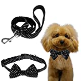 Itery Nylon Dog Collar Puppy Pet Collar Bow Walking Leash Set (Black, L)